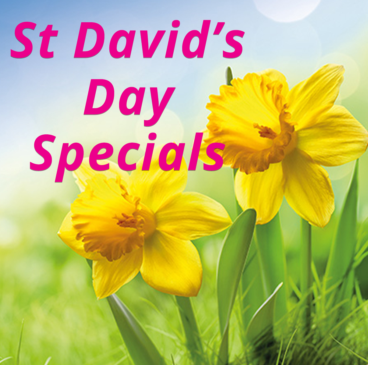 St David's Day Special
